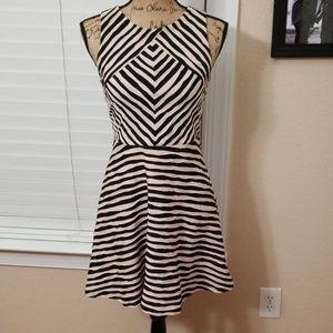 Xhilaration fit and flare black/cream dress medium